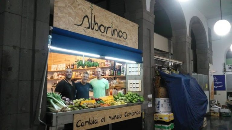 28102483 15413341La Natura de Dona Gabriella frutas y verduras Bio 5 768x432